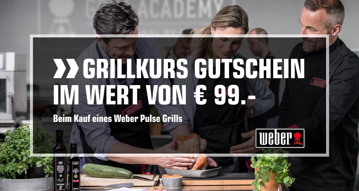 Seriennummer Weber Holzkohlegrill : Weber pulse griller aktion gratis grillkurs 17.6. 30.6.2018